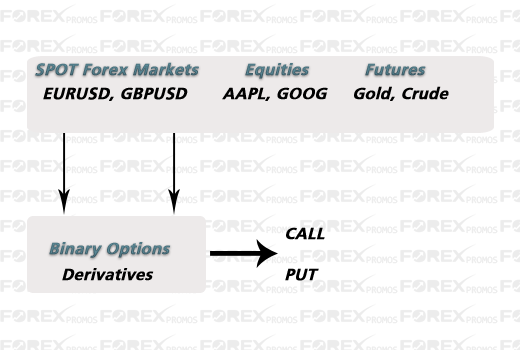 Difference between stock and option trading